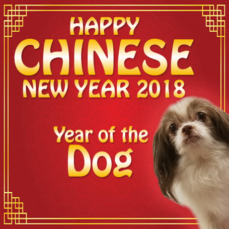 Chinese New Year 2018 - 01
